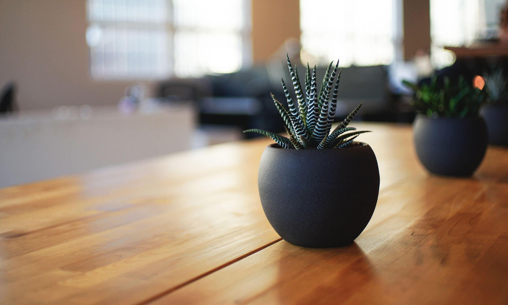 Förenklar, förnyar och förbättrar din marknadsföring!